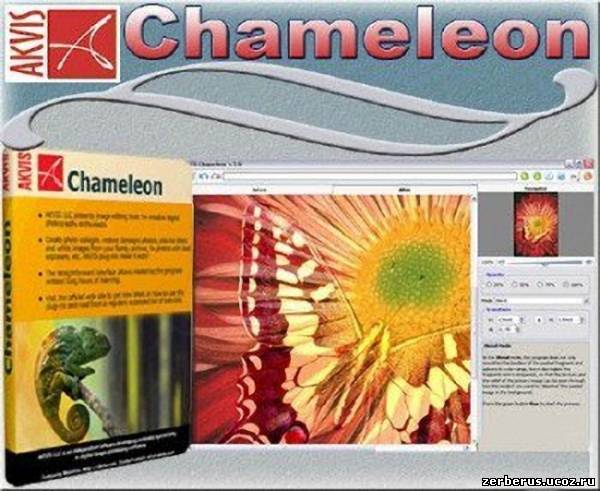 Скачать бесплатно AKVIS Chameleon v7.0.1603 от Vipsite.ws.