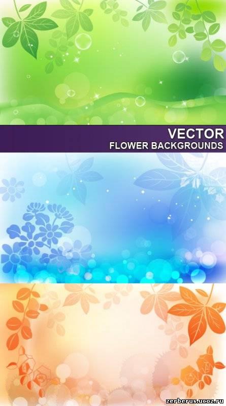 Цветочные фоны для дизайна