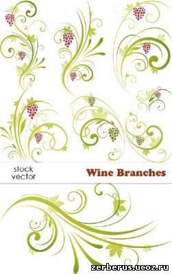 Виноградная лоза - вектор