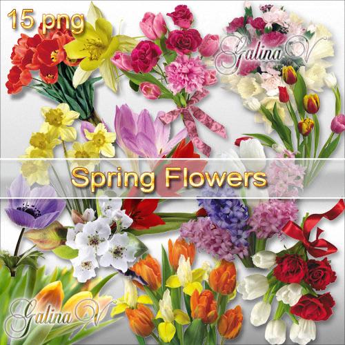 Клипарт-Весенние цветы. (PNG)