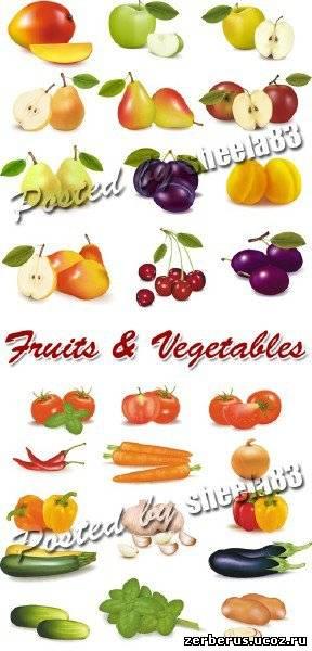 Фрукты и овощи в векторе/Fruits & Vegetables Vector