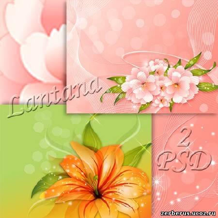 <h1>Цветочные фоны в PSD</h1>.